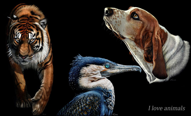 Photo: 20 Beautiful and Realistic Animal Paintings by Heather Lara http://webneel.com/webneel/blog/20-beautiful-and-realistic-animal-paintings-heather-lara