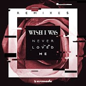 Never Loved Me (Remixes)