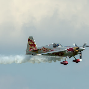 by Wilson Silverthorne - Transportation Airplanes ( red bull, air race, airplane )