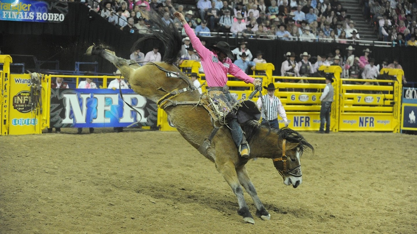Watch 2016 WNFR: B&W Preview Show live