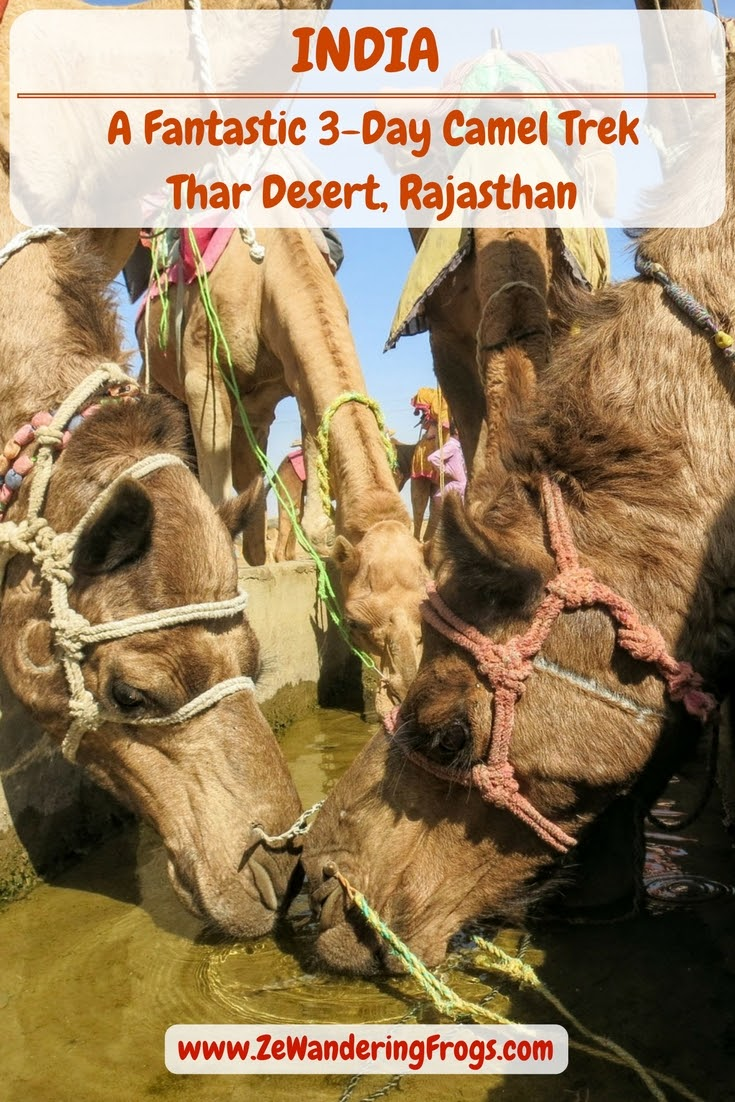 A Fantastic 3-Day Camel Trek in the Thar Desert, Rajasthan - Day 2