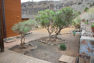 Photo: Acceso a los Huertos Ecológicos