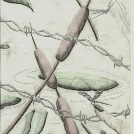 by Jean Snedeker - Drawing All Drawing