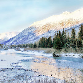 Winter In Portage by Patricia Phillips - Landscapes Travel ( alaska portage winter )