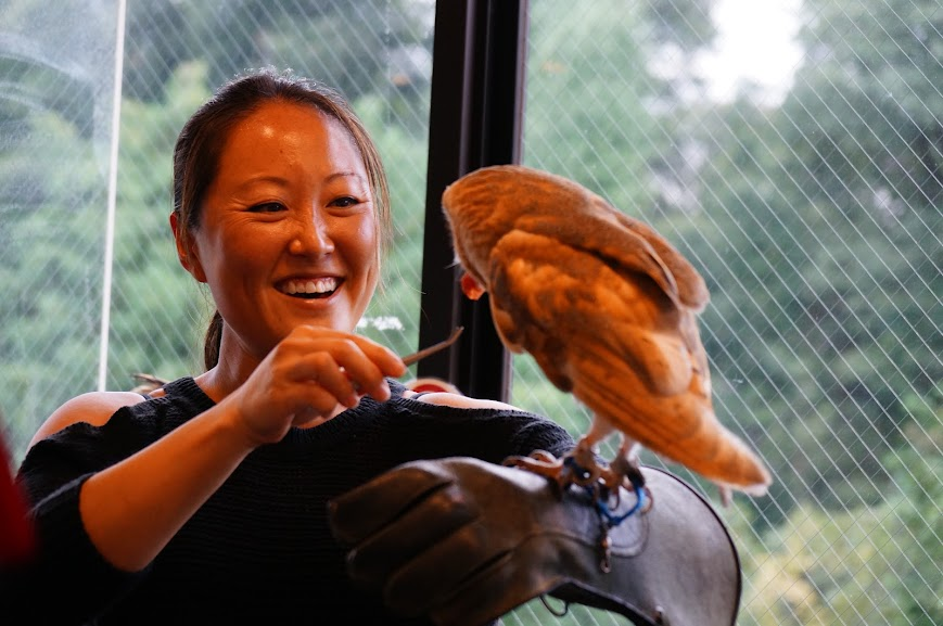 A happy participant feeds a barn owl