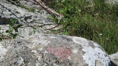 Photo: I čim smo krenuli naišli smo na, ako malo pažljivije pogledate na kamen, ogromnu , opasnu zvijer