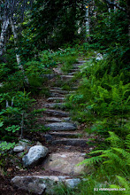 Photo: A path made of stones at Mt Ascutney State Park by Tara Schatz