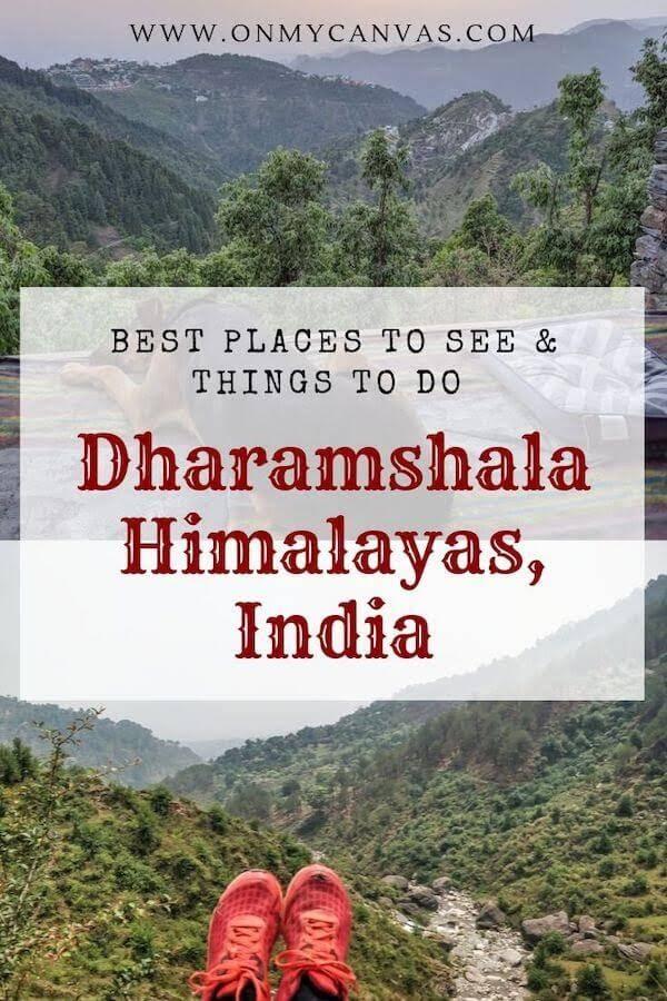 travel guide dharamshala
