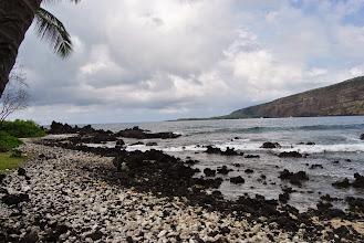 Photo: lava nera e corallo bianco