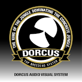 DORCUS AUDIO VISUAL SYSTEM