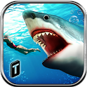 Angry Shark 2016 icon