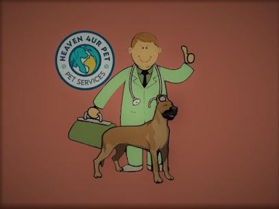 veterinarians in Warren Park
