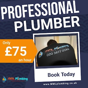 professional plumber in North London