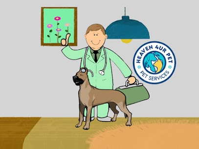 Pets diagnosis and treatment