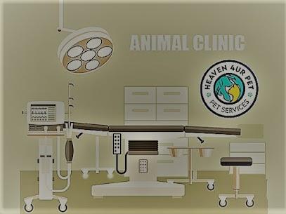 Woodstock veterinary clinics