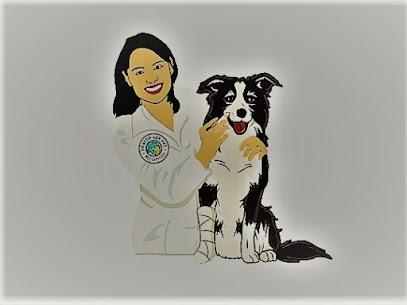 emergency veterinarians in Maywood