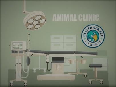 Animal dental clinic near me