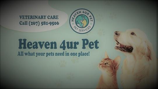 animal hospital Havertown PA