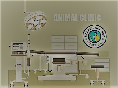 Call our Indy vets for any veterinary services