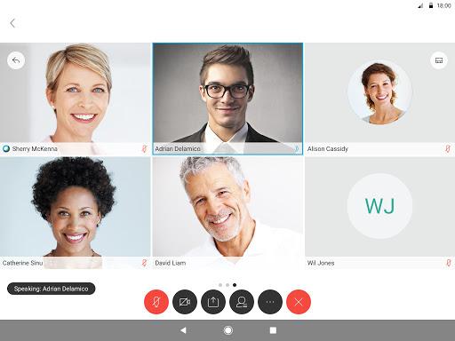 Cisco Webex Meetings screenshot 8