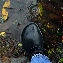 Photo: Crocs keep the wet out.