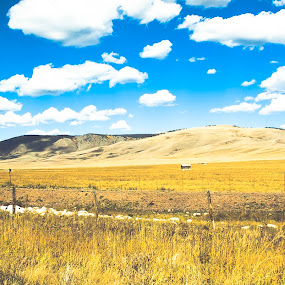 In the middle of nowhere by Anh Nguyen - Landscapes Prairies, Meadows & Fields ( nowhere, autumn, fall, wyoming, us, meadows, house, middle, laramie, fields )