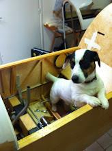 Photo: Vérification du montage! j'avais pas de chat sous la main, j'ai fait avec les moyens du bord...lol