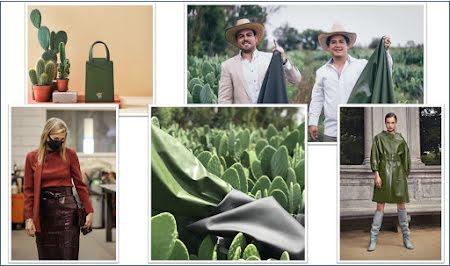 Duurzaam leder van Mexicaanse cactussen