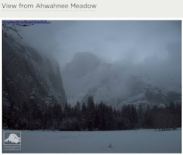 Photo: WEBCAM - Ahwahnee Meadow 3 days later.   The Yosemite Conservancy Org's Ahwahnee Meadow webcam image, which of course changes through the day daily and viewable at http://www.yosemiteconservancy.org/webcams/view-ahwahnee-meadow ...   Just 30 minutes later, the view of Half Dome was obliterated by the snow/fog -- http://www.andrys.com/ahwahnee-meadow_3-days-later-webcam-1030am.jpg -- The Weather: 32 degrees at the time (aka freezing) -- http://www.andrys.com/weather-sunday-031812_10-30am.gif ...    And then a bit later, after the invisibility of Half Dome, a HUGE change...Just GORgeous, seen at http://www.andrys.com/ahwahnee-031812-1249.jpg ...  We had read that Saturday would bring a somewhat severe storm and we were glad about our timing. Would not have been very comfortable resting on that meadow.