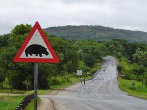 Photo: Такие знаки на дорогах встречаются тут часто