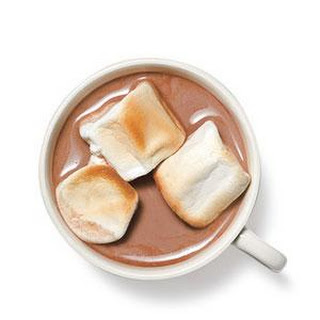 Malted Hot Cocoa With Toasted Marshmallows