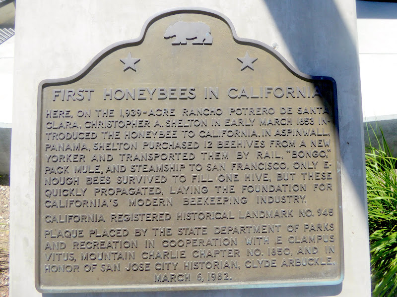 Photo: First honeybees brought to California in 1853 by Christophe Shelton