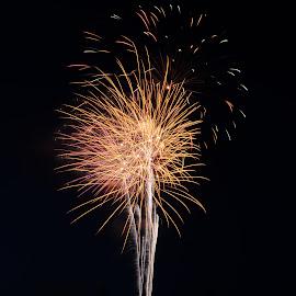 FireTree by Narendra Sharma - Digital Art Abstract ( digital photography, fireworks, photography, digital art )