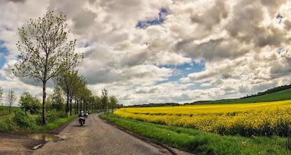 Photo: Fot. Budzik