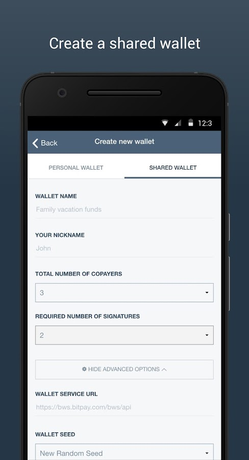 Copay Bitcoin Wallet- screenshot