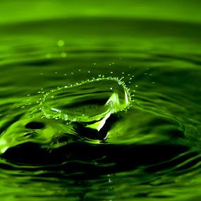 Splash #1 by Daniel Erstad - Abstract Water Drops & Splashes