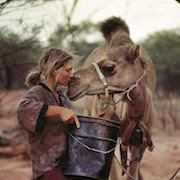 К чему снится верблюд во сне?