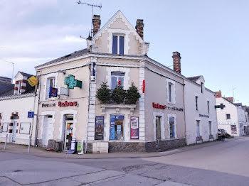 locaux professionels à Saint-andre-des-eaux (44)