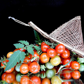 Tomatoes  by Asif Bora - Food & Drink Fruits & Vegetables