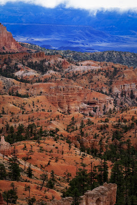 Bryce Canyon di #giannigalliphoto