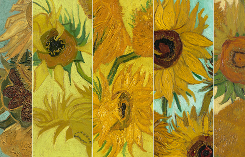 Visit The Sunflower Website To Find Out More About This International Collaboration Van Gogh Museum