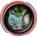 Outdoor Butterfly Garden Ideas icon