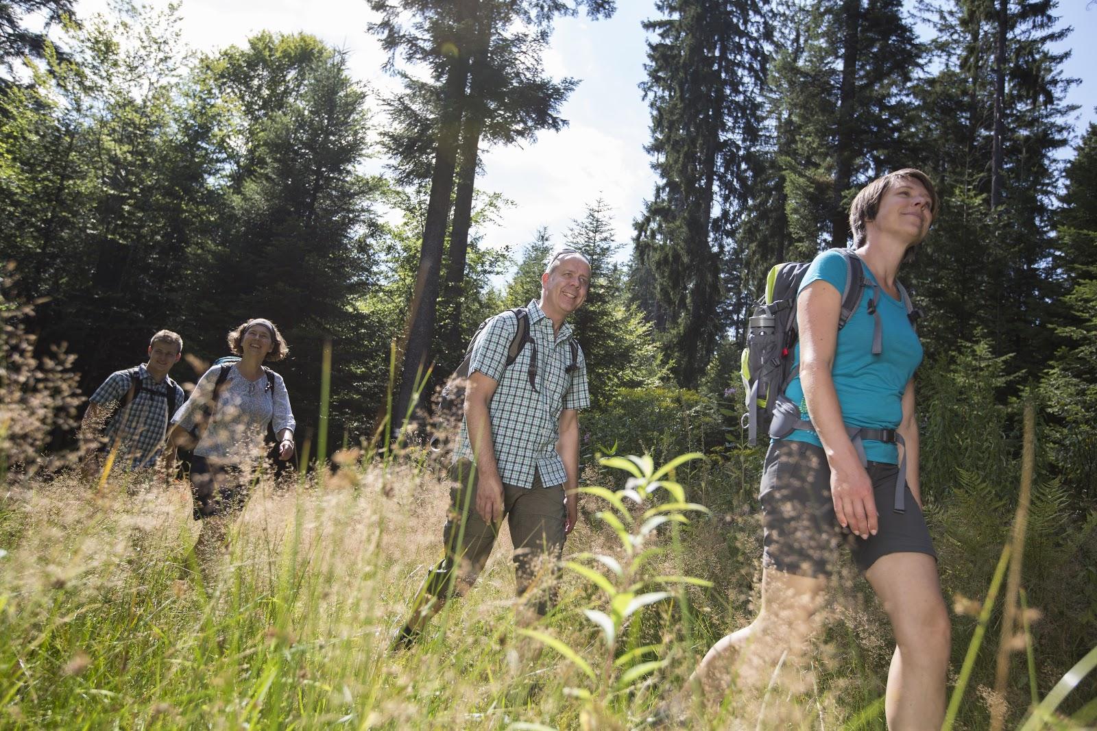 Wandern im Nördlichen Schwarzwald