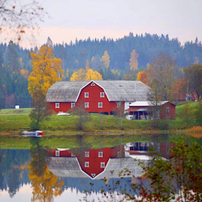 by Eva Larsson - Buildings & Architecture Homes ( countryside feeling autumn reflection colorful red barn )