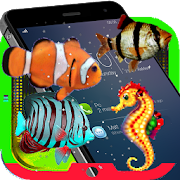 Fish Aquarium in Screen