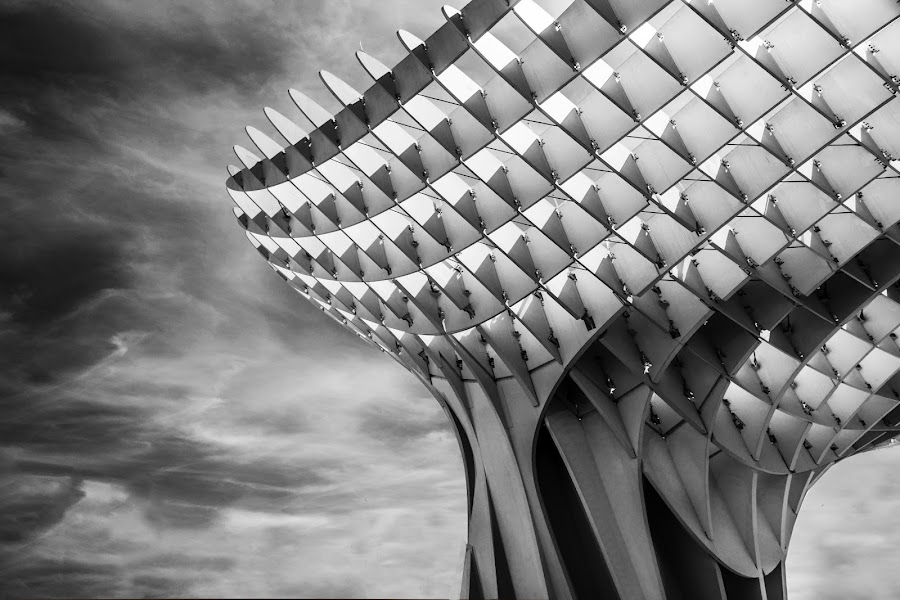 by Rosita Santens - Black & White Buildings & Architecture
