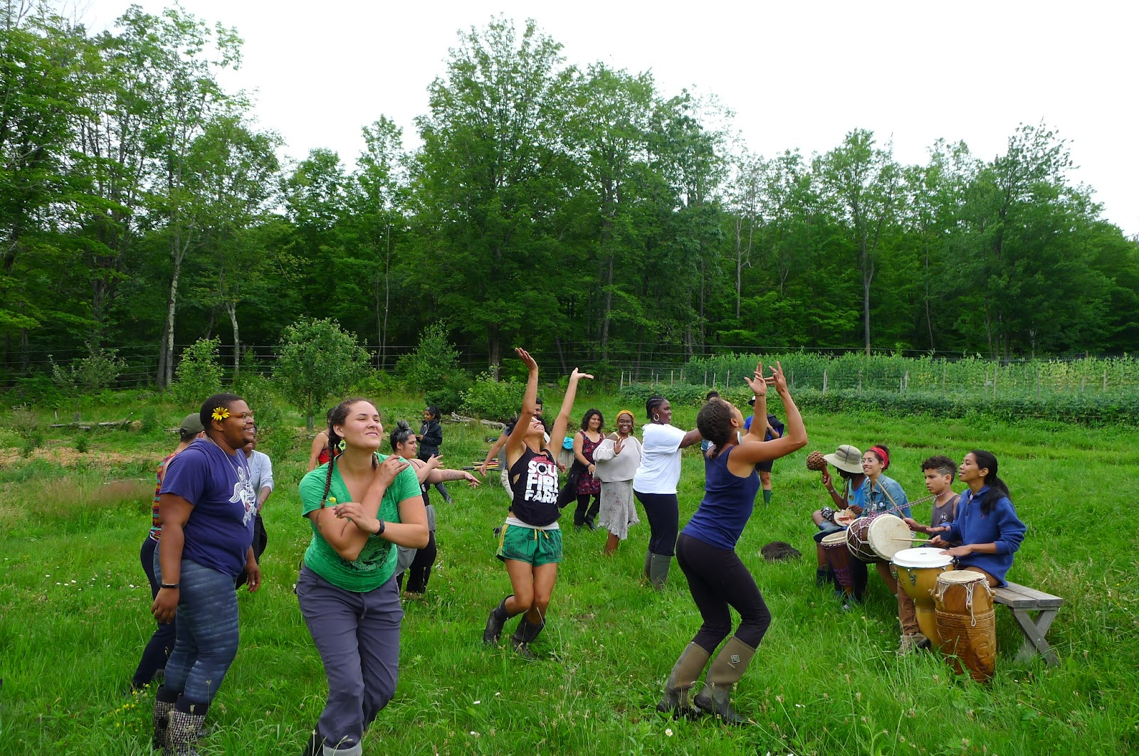 drumming and dancing in orchard 2.JPG
