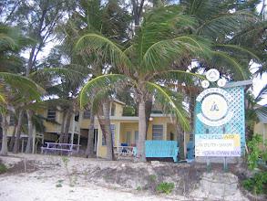 Photo: Yoga Retreat, Bahamas - palm trees