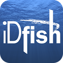 iDfish icon