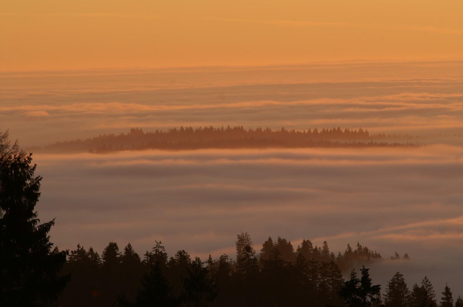 Sonnenuntergang in neuweiler im Nördlichen Schwarzwald erleben vom Landhotel Talblick aus